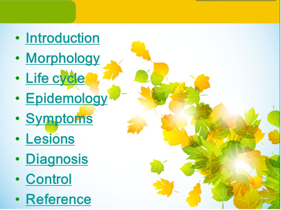 Introduction Morphology Life cycle Epidemology Symptoms Lesions Diagnosis Control Reference