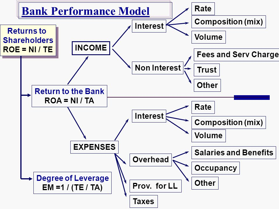 Bank Performance Model