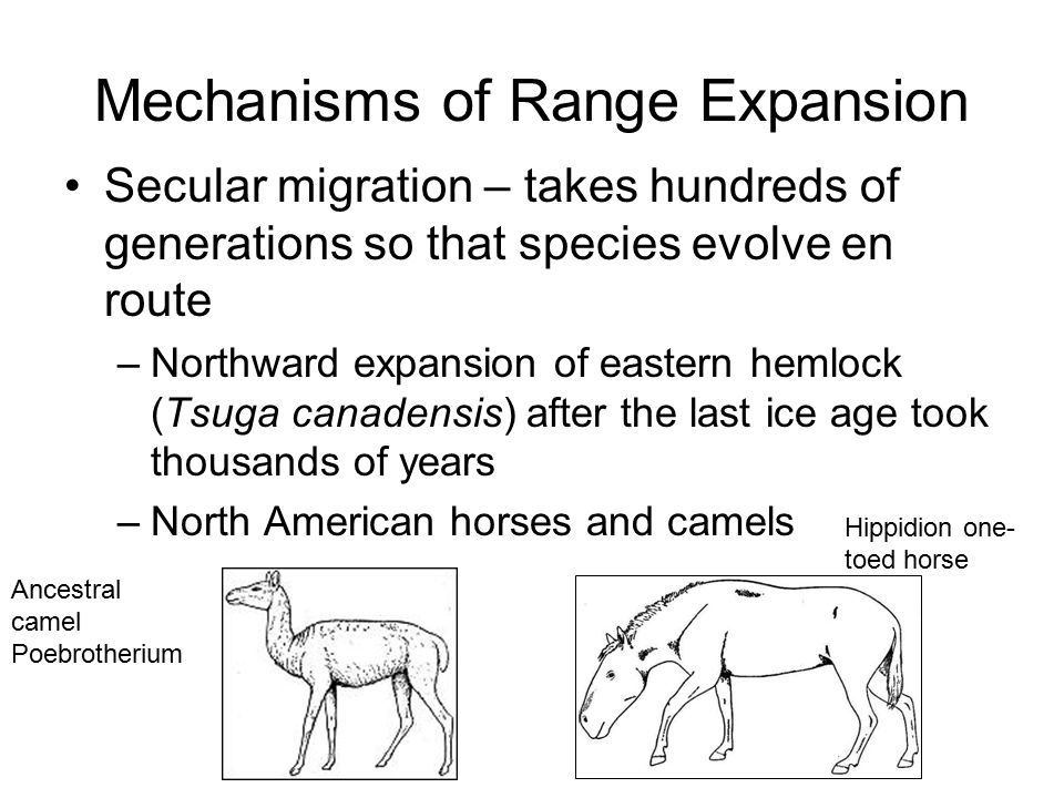 Mechanisms of Range Expansion