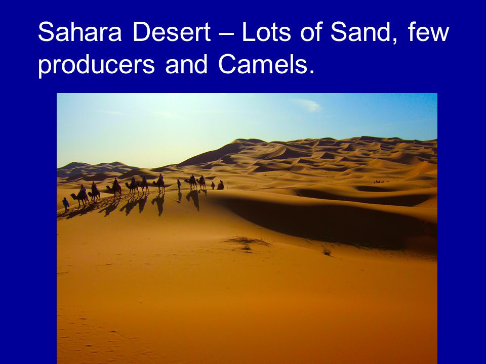 Sahara Desert – Lots of Sand, few producers and Camels.