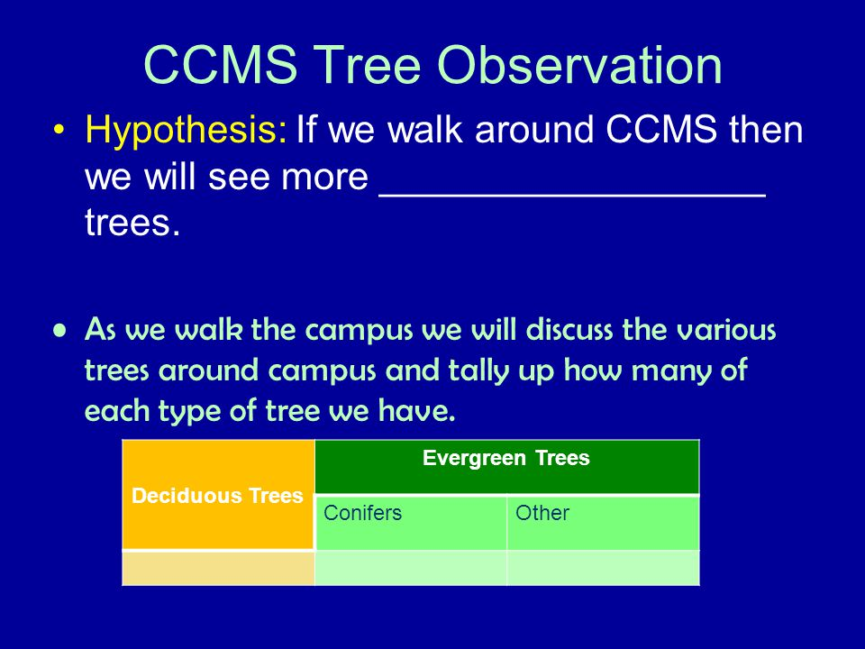 CCMS Tree Observation Hypothesis: If we walk around CCMS then we will see more __________________ trees.