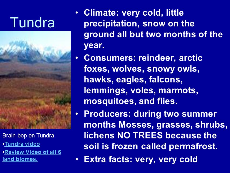 Climate: very cold, little precipitation, snow on the ground all but two months of the year.