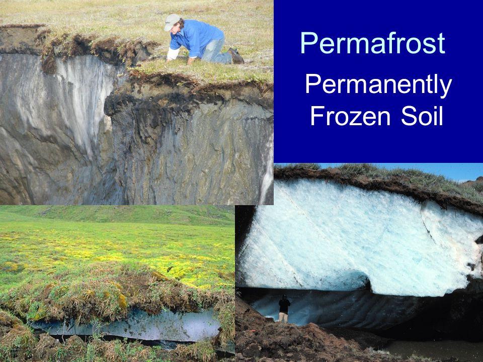 Permanently Frozen Soil