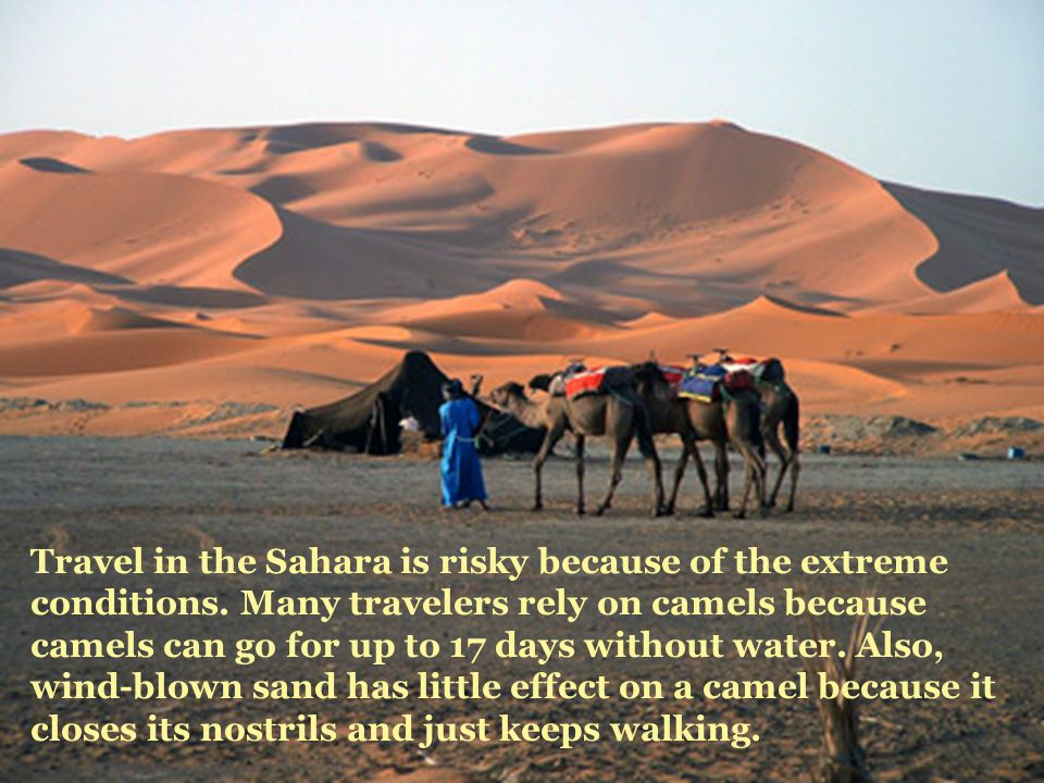 Travel in the Sahara is risky because of the extreme conditions