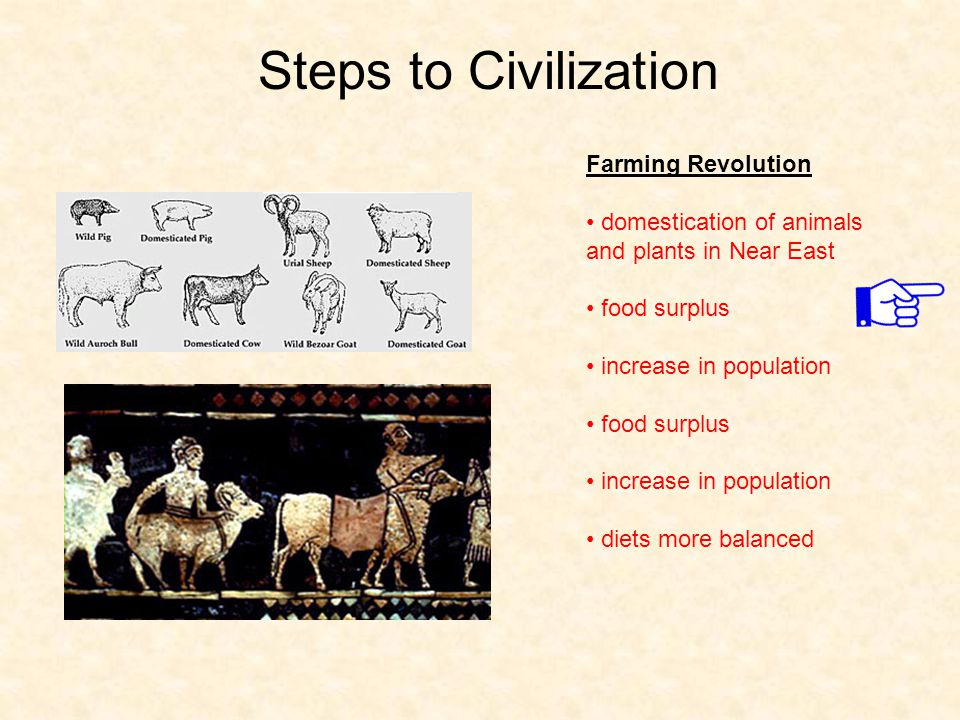 Steps to Civilization Farming Revolution