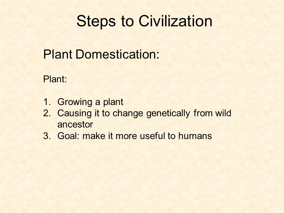 Steps to Civilization Plant Domestication: Plant: Growing a plant