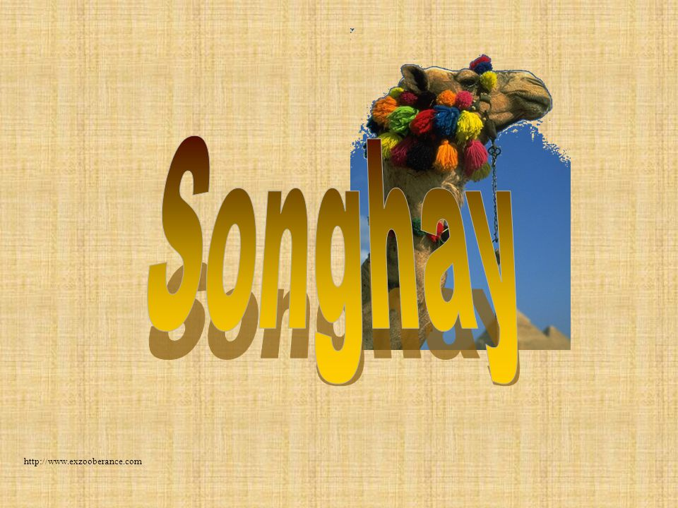 Songhay http://www.exzooberance.com