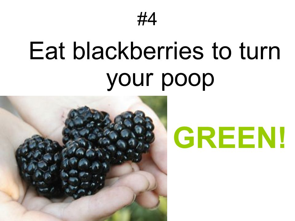 Eat blackberries to turn your poop