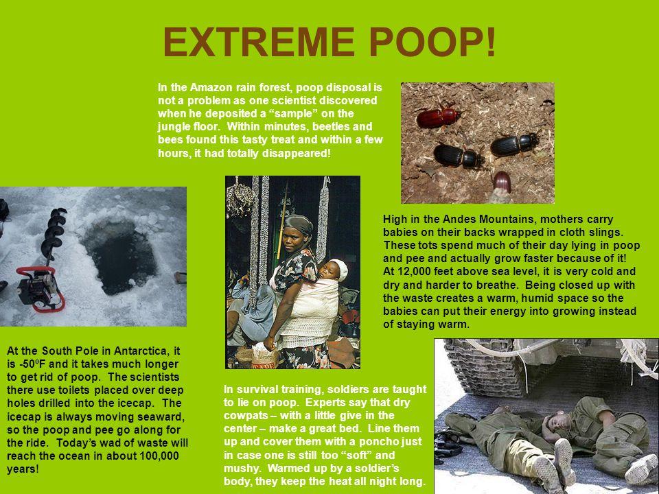 EXTREME POOP!