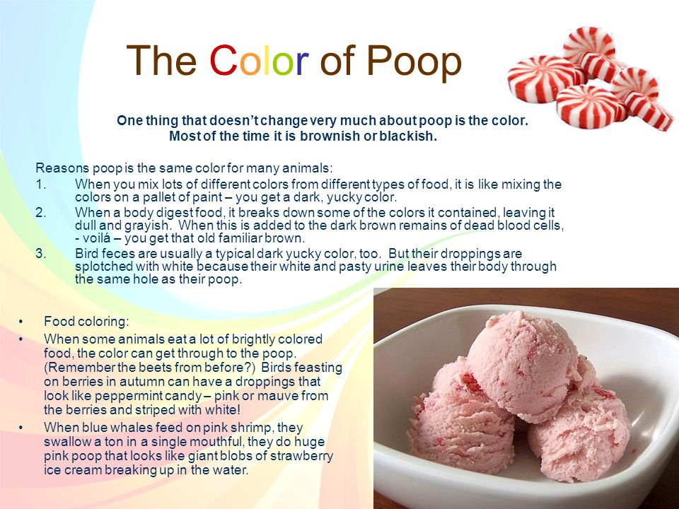 One thing that doesn't change very much about poop is the color.