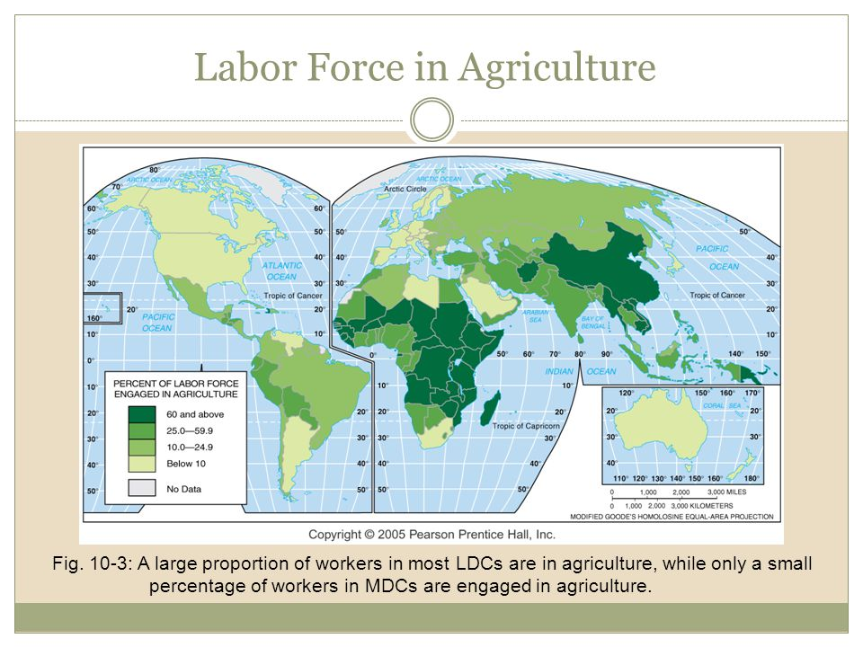 Labor Force in Agriculture