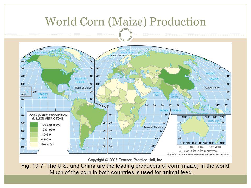 World Corn (Maize) Production