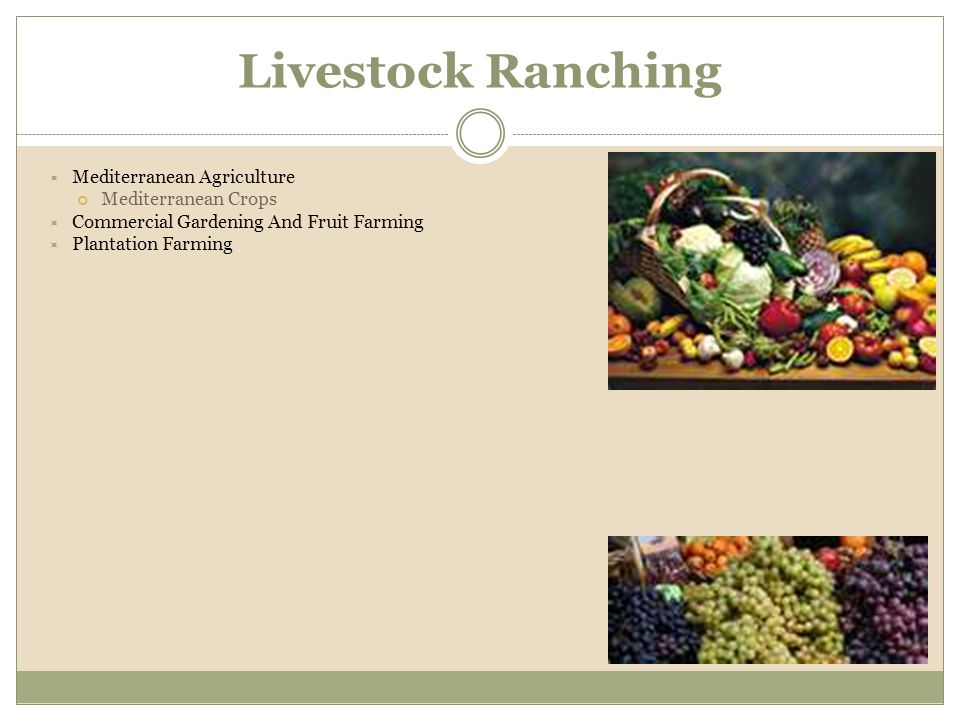 Commercial Gardening And Fruit Farming Plantation Livestock Ranching Mediterranean Agriculture Crops