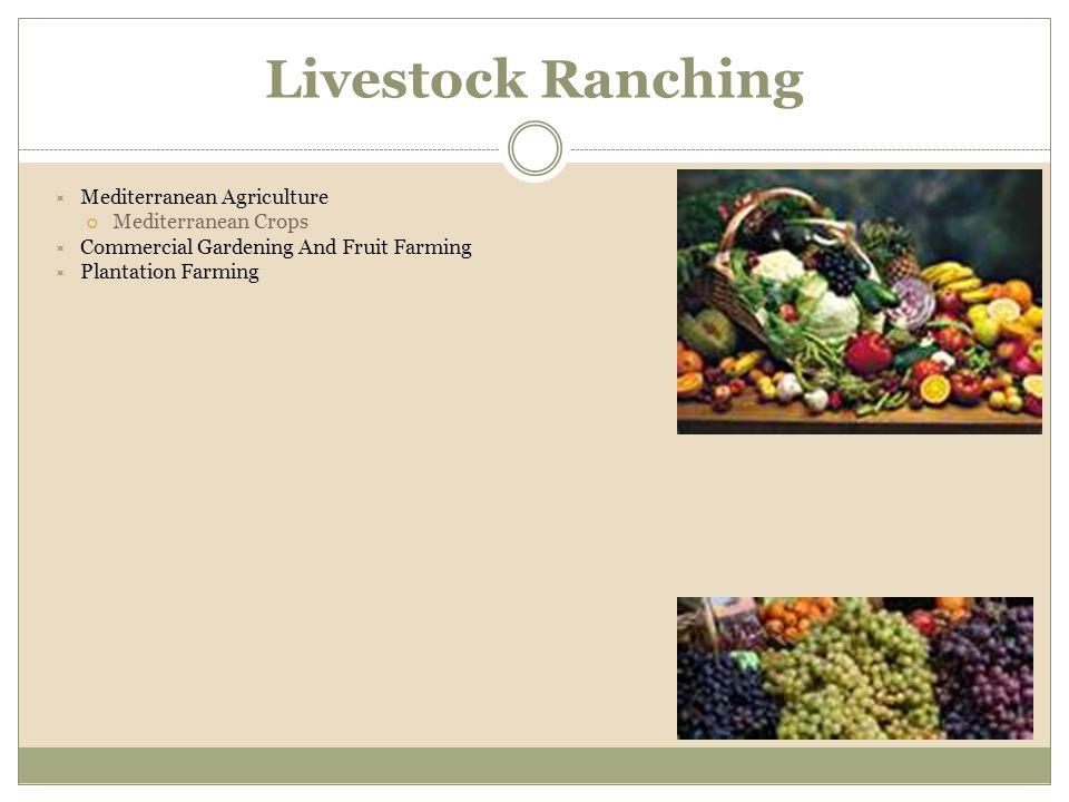 Livestock Ranching Mediterranean Agriculture Mediterranean Crops