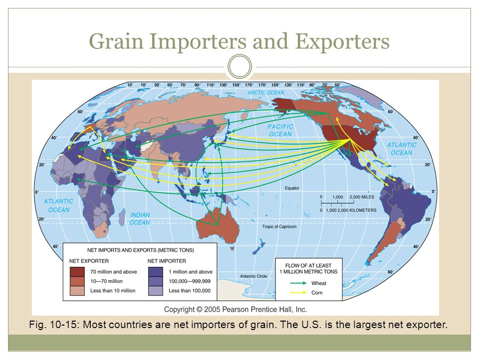 Grain Importers and Exporters