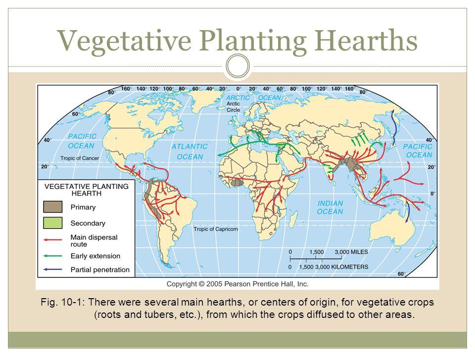 Vegetative Planting Hearths