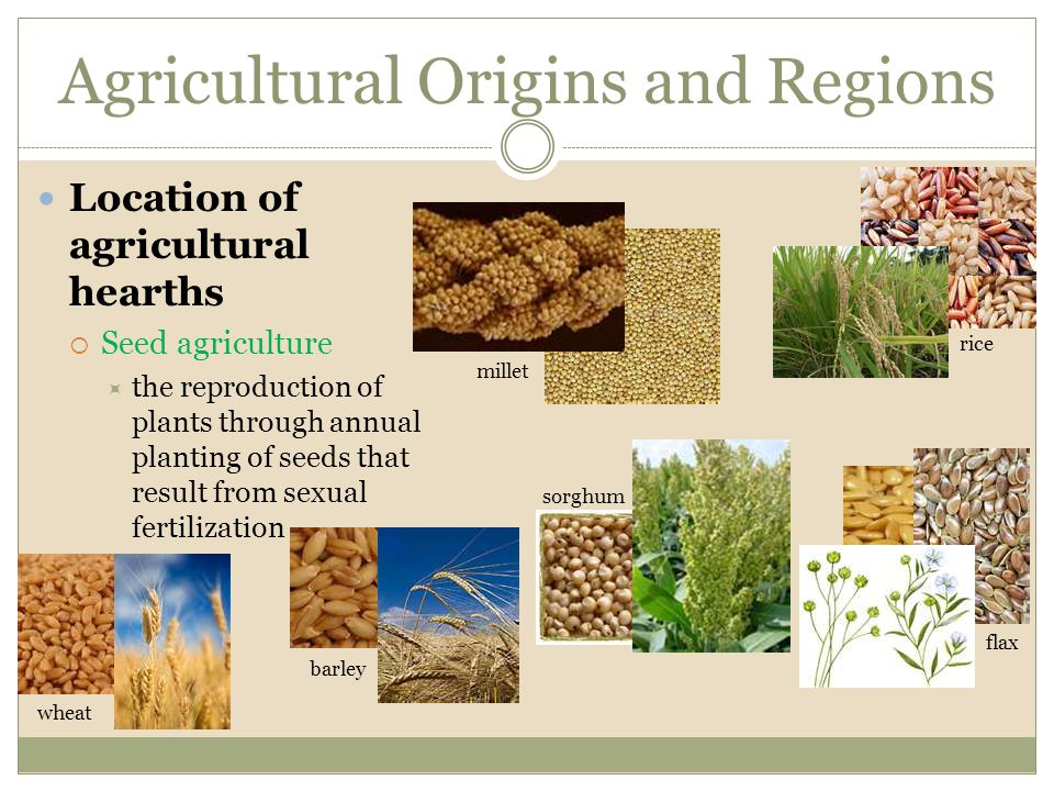 Agricultural Origins and Regions