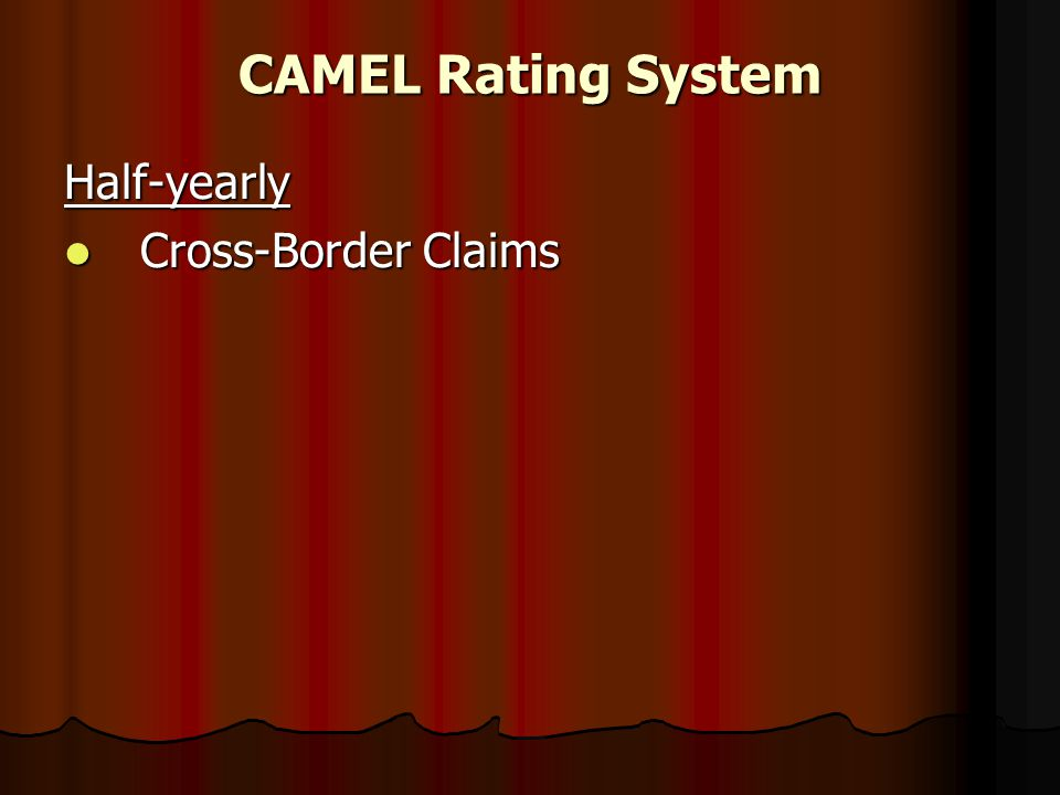 CAMEL Rating System Half-yearly Cross-Border Claims