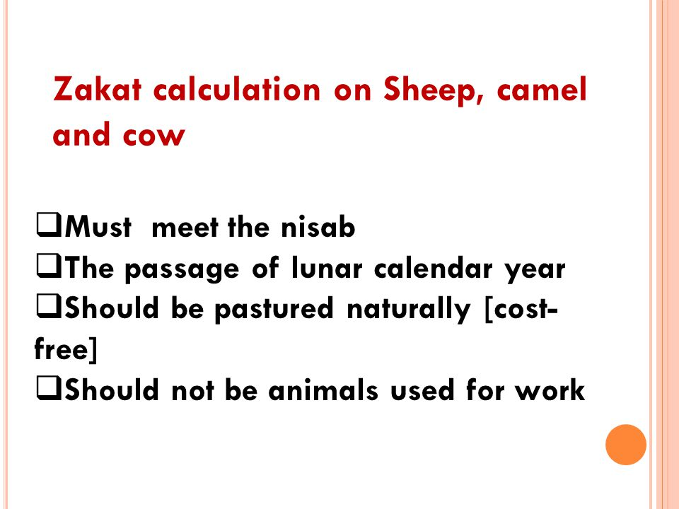 Zakat calculation on Sheep, camel and cow