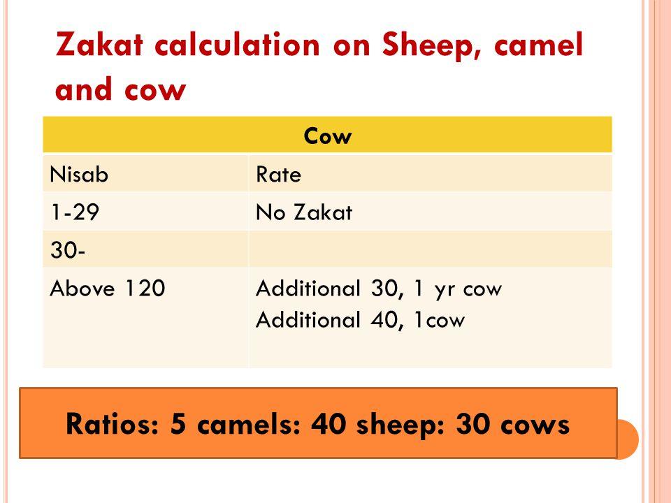 Ratios: 5 camels: 40 sheep: 30 cows