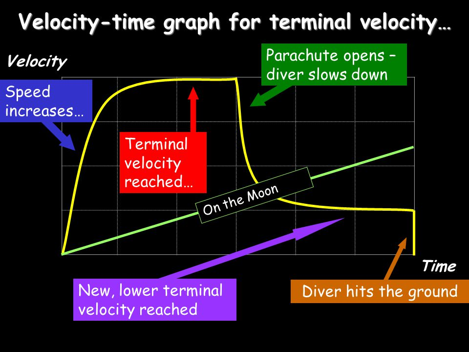 Velocity-time graph for terminal velocity…