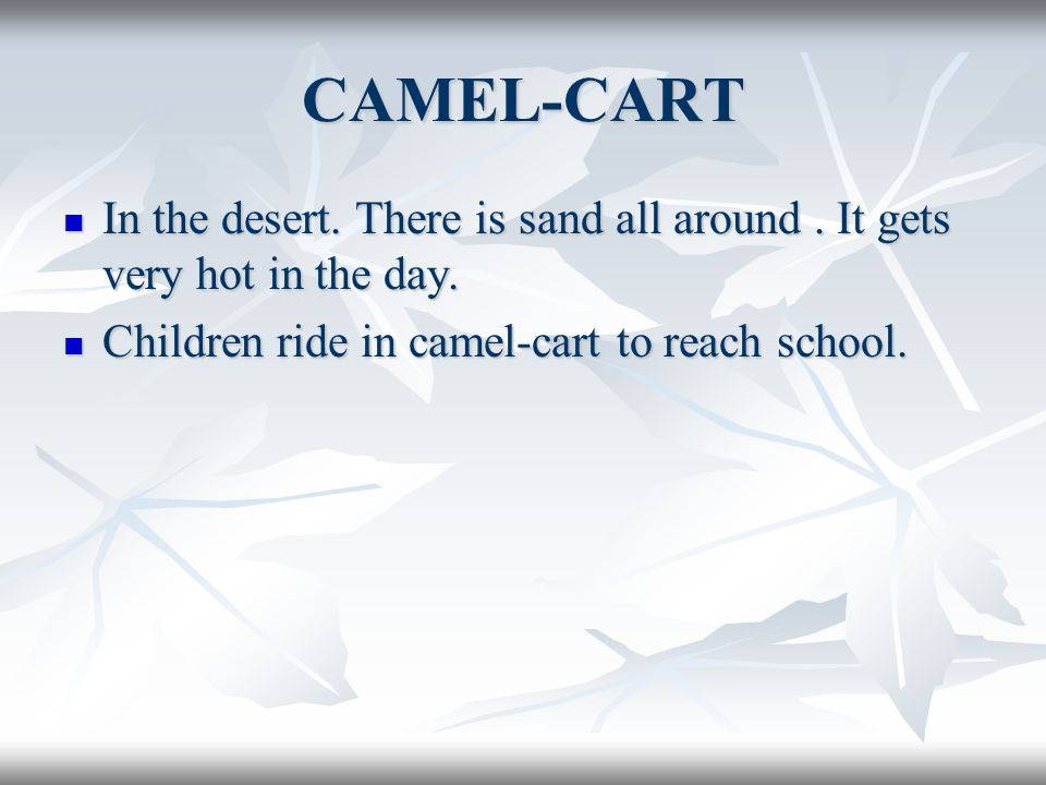 CAMEL-CART In the desert. There is sand all around .