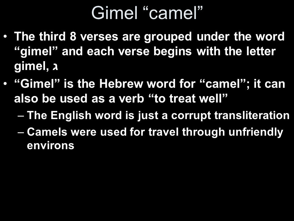 Gimel camel The third 8 verses are grouped under the word gimel and each verse begins with the letter gimel, ג.
