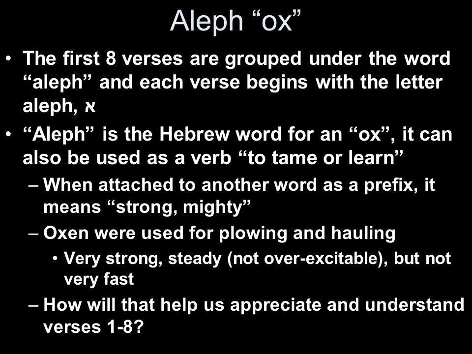 Aleph ox The first 8 verses are grouped under the word aleph and each verse begins with the letter aleph, א.
