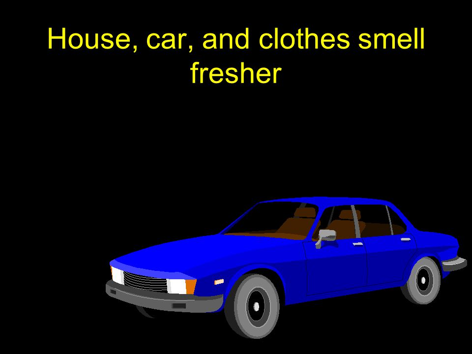 House, car, and clothes smell fresher