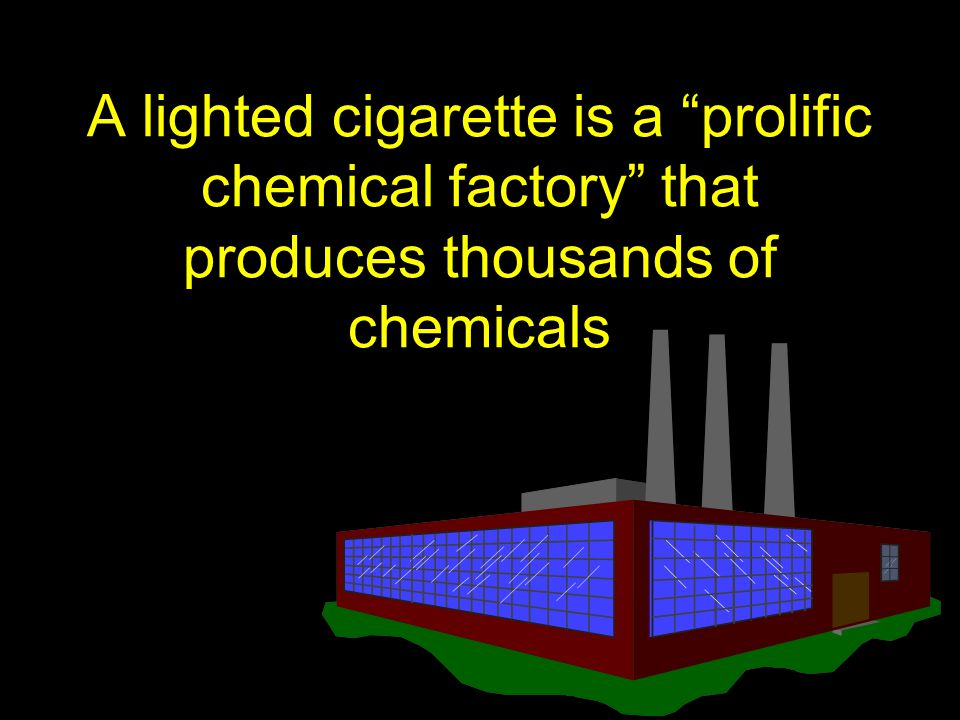 A lighted cigarette is a prolific chemical factory that produces thousands of chemicals