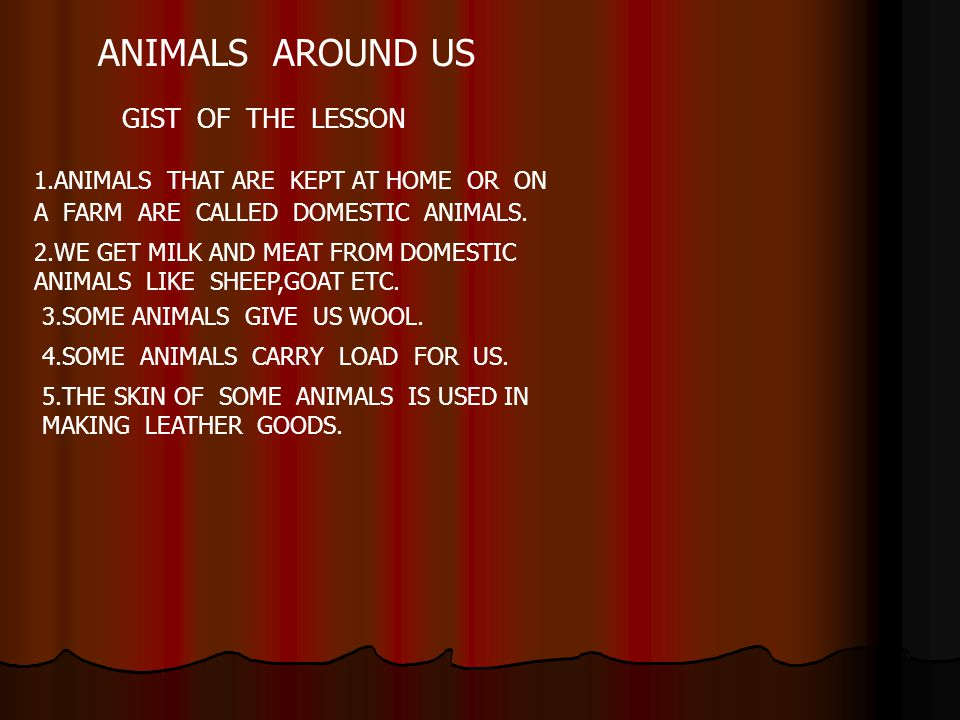 ANIMALS AROUND US GIST OF THE LESSON