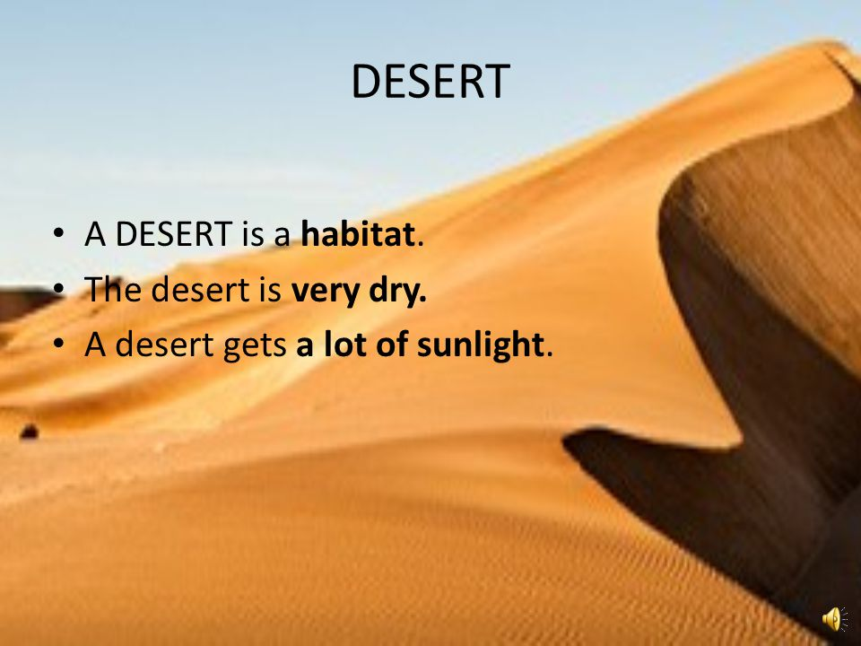 DESERT A DESERT is a habitat. The desert is very dry.