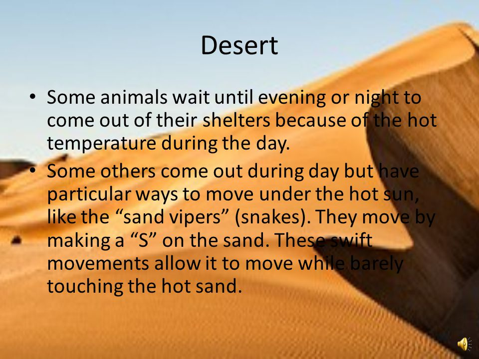 Desert Some animals wait until evening or night to come out of their shelters because of the hot temperature during the day.
