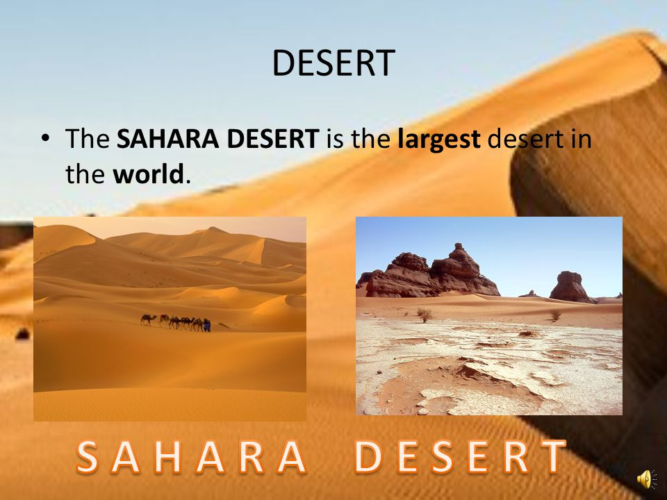 DESERT The SAHARA DESERT is the largest desert in the world. S A H A R A D E S E R T