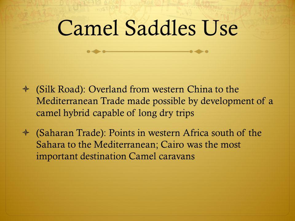 Camel Saddles Use