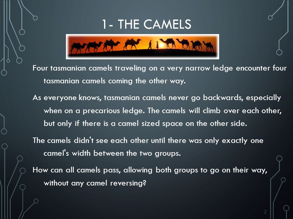 1- The Camels