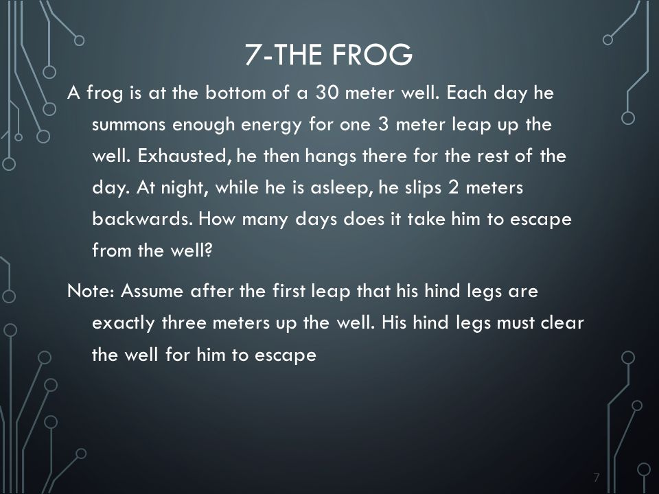 7-The frog