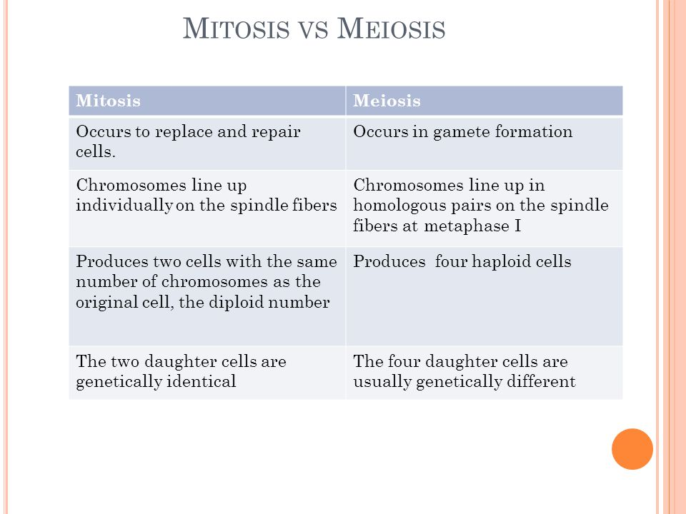 Mitosis vs Meiosis Mitosis Meiosis Occurs to replace and repair cells.