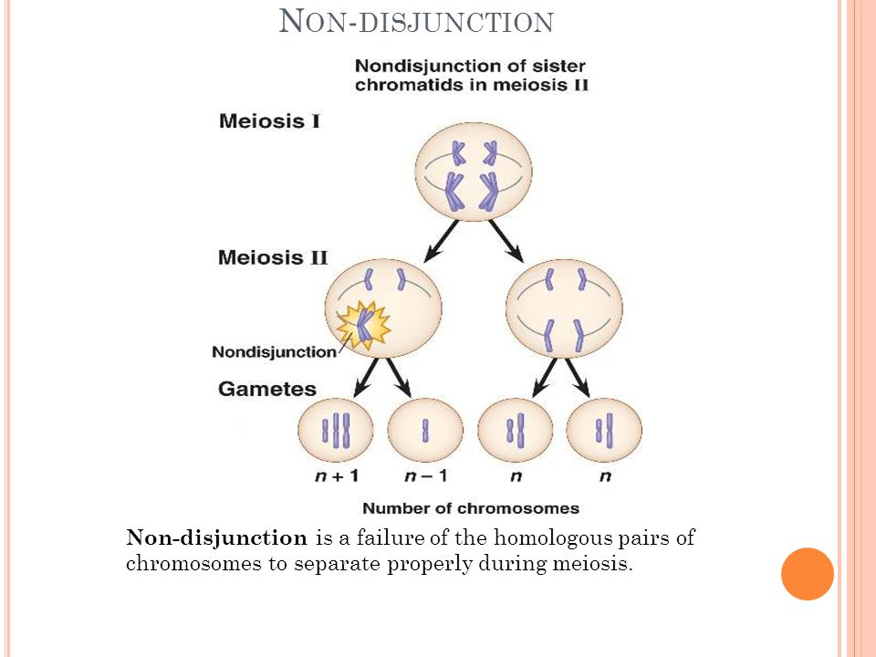 Non-disjunction Non-disjunction is a failure of the homologous pairs of chromosomes to separate properly during meiosis.