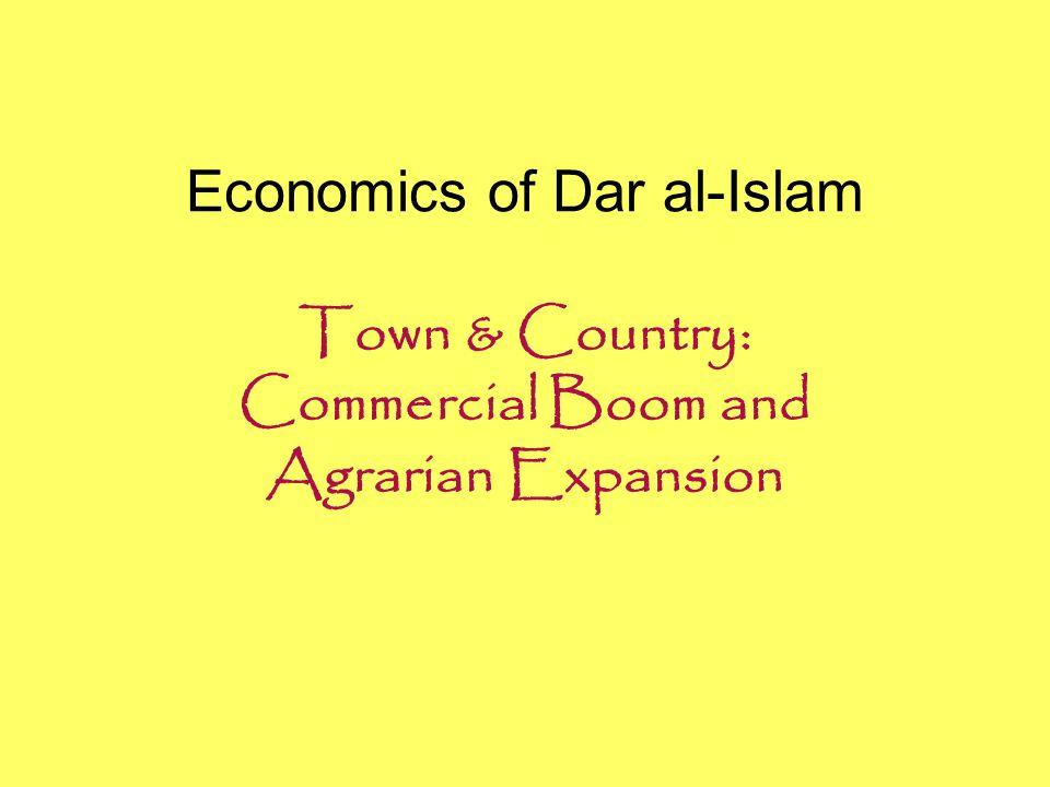 Economics of Dar al-Islam