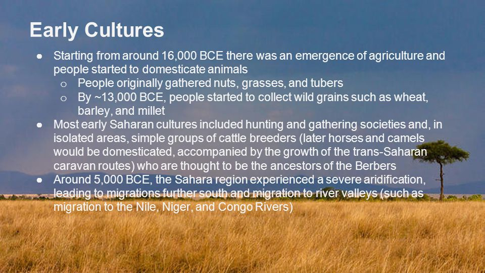 Early Cultures Starting from around 16,000 BCE there was an emergence of agriculture and people started to domesticate animals.