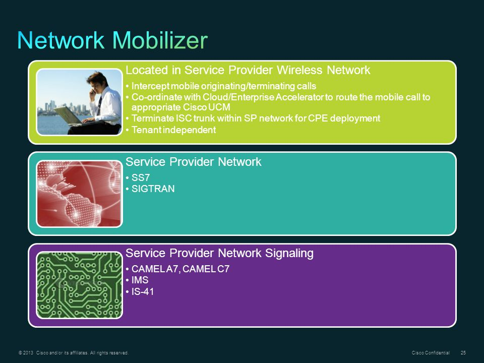 Network Mobilizer Located in Service Provider Wireless Network