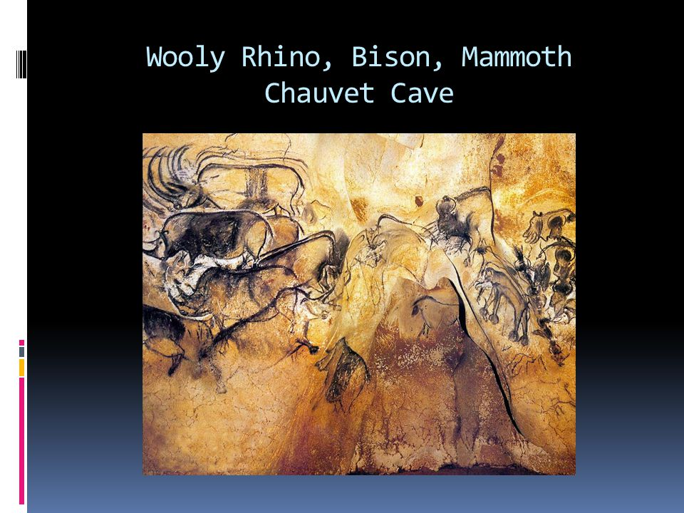 Wooly Rhino, Bison, Mammoth Chauvet Cave