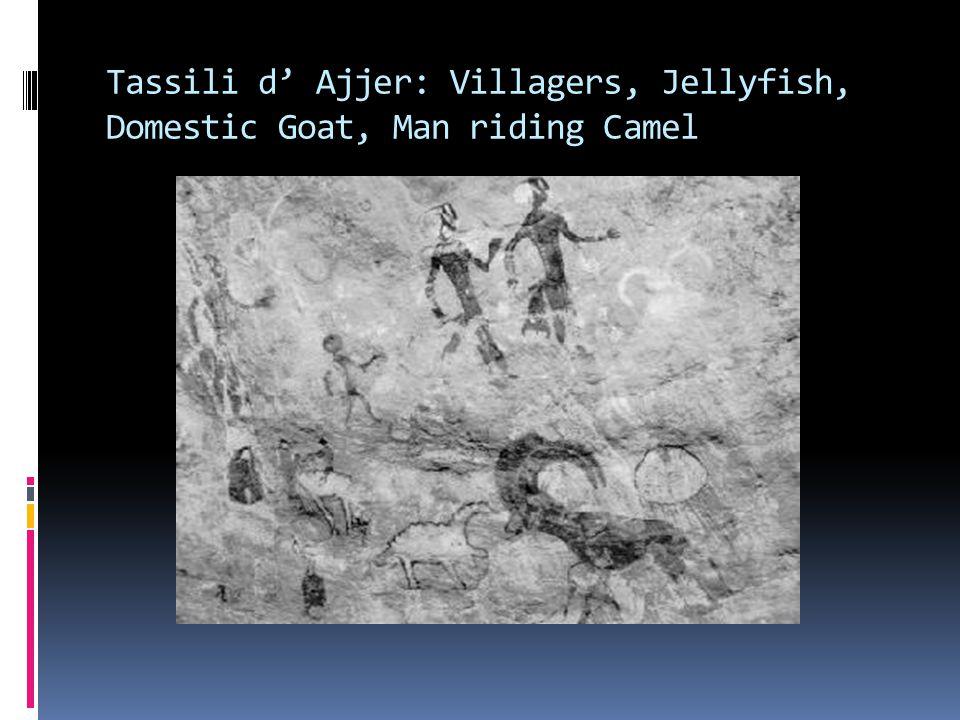 Tassili d' Ajjer: Villagers, Jellyfish, Domestic Goat, Man riding Camel