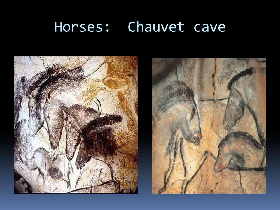 Horses: Chauvet cave