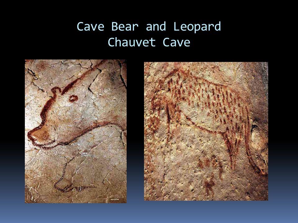 Cave Bear and Leopard Chauvet Cave