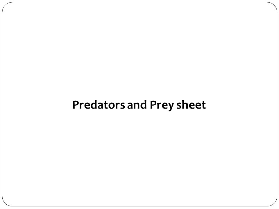 Predators and Prey sheet