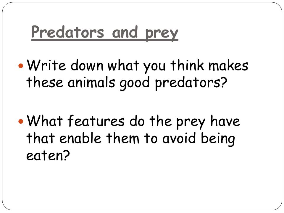 Predators and prey Write down what you think makes these animals good predators