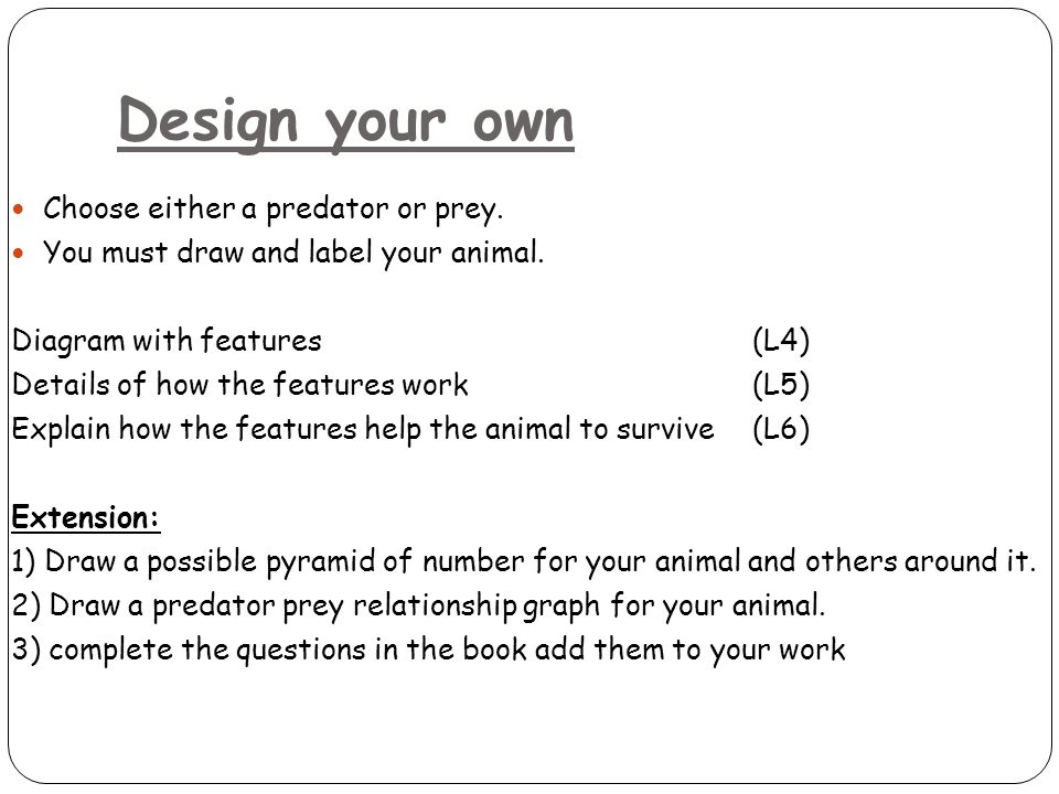 Design your own Choose either a predator or prey.