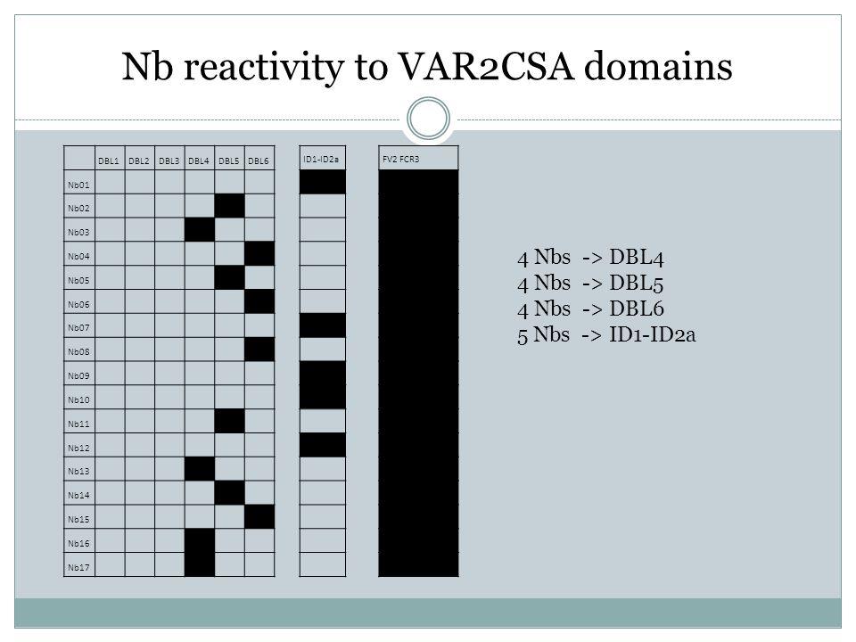 Nb reactivity to VAR2CSA domains